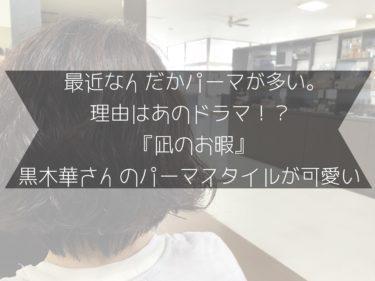 最近なんだかパーマが多い。理由はあのドラマ!?『凪のお暇』黒木華さんのパーマスタイルが可愛い