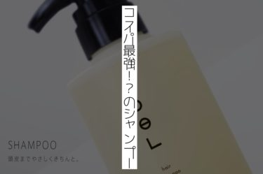 コスパ最強!?香り、使用感、仕上がり、三拍子揃ったシャンプー『トエル』(取り扱い商品紹介)